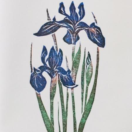 2 Irises card
