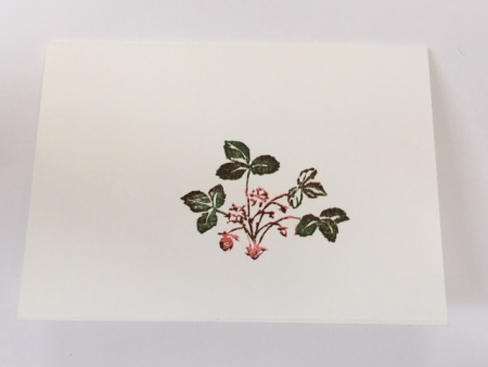 miniature strawberry card