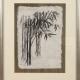 """Framed print """"Bamboo"""" by Ilse Buchert Nesbitt"""