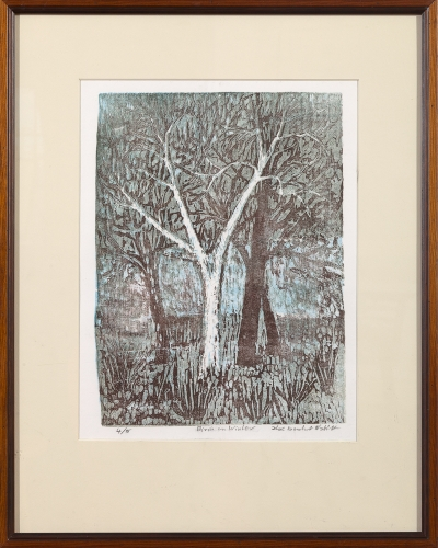 "framed print ""Birch in Winter"" by Ilse Buchert Nesbitt"
