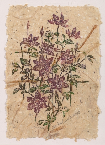 "woodblock print ""Clematis"" on handmade paper by Ilse Buchert Nesbitt"