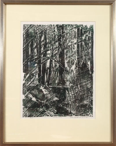 "Framed print ""Forest Pond"" by Ilse Buchert Nesbitt"