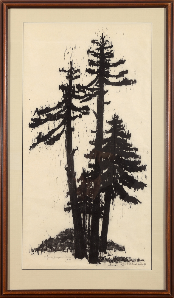 "Framed print ""Sequoia Sempervirens"" by Ilse Buchert Nesbitt"