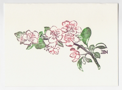 Apple Blossom notecard - woodcut by Ilse Buchert Nesbitt