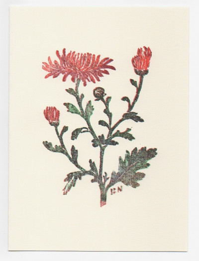 chrysanthemum notecard - woodcut by Ilse Buchert Nesbitt