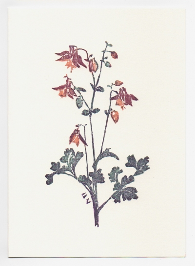 Columbine notecard - woodcut by Ilse Buchert Nesbitt