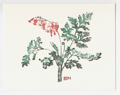 Wild Bleeding Heart notecard - woodcut by Ilse Buchert Nesbitt