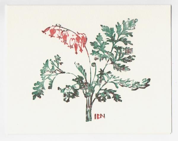Wild Bleeding Heart notecard - woodcut by Ilse Buchert Nesbitt